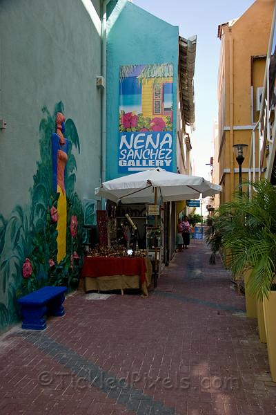 Nena Sanchez Gallery