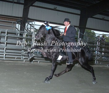 CLASS 19  OPEN 3 YR OLD  RC