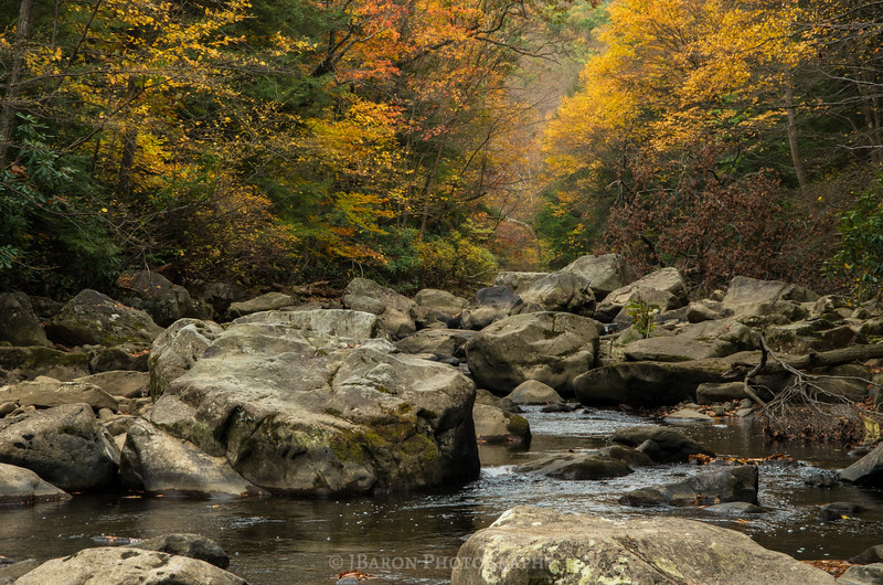 Rocky Ohiopyle Stream in the Fall