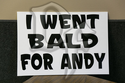 Balding Brothers For Andy Fundraiser