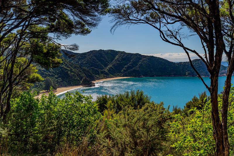 «Abel Tasman Track»: Blick Richtung «Mutton Cove»