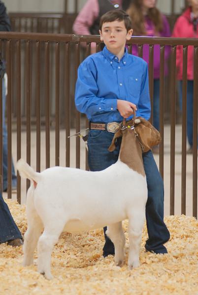 kay_county_showdown_goats_20191207-60.jpg