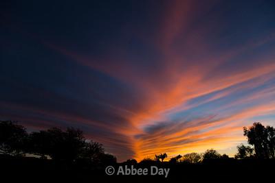 Cloud Sunsets