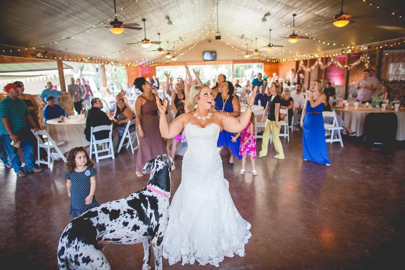 2014 09 14 Waddle Wedding - Reception-715.jpg