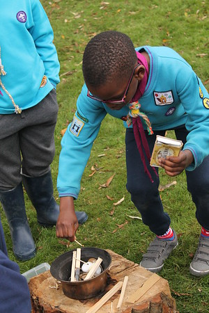 Beavers - Skills Day  (October 2017)