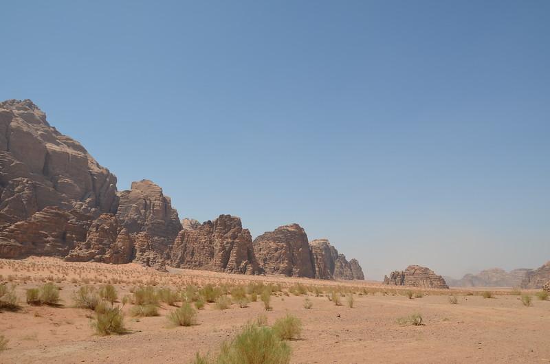 DSC_9474-wadi-rum-scrub.JPG