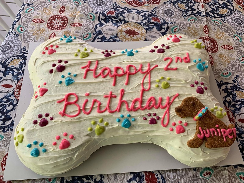 Dirty Dog cake.jpg