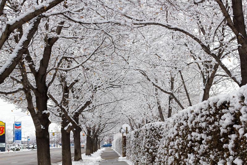 2016_01_31_Winter_Scenery_9999_17.jpg