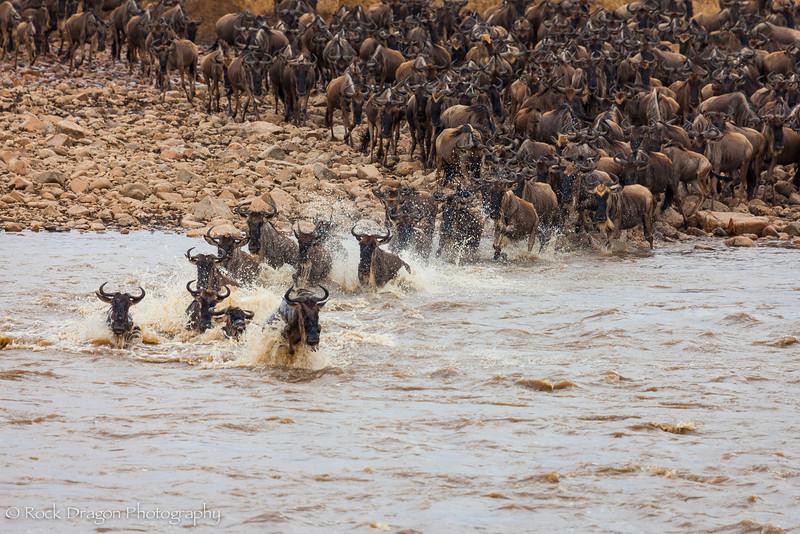 North_Serengeti-51.jpg