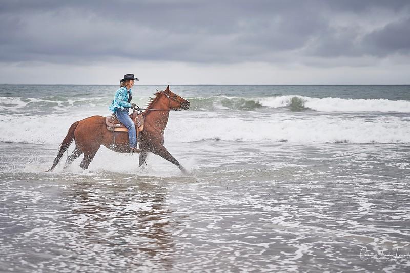 _DSC20250120@Catherine Aranda-LearnedOcean Romance©CAL..jpg