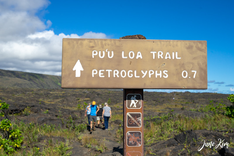 Pu`u Loa Petroglyph Field, Hawaii Volcanoes National Park