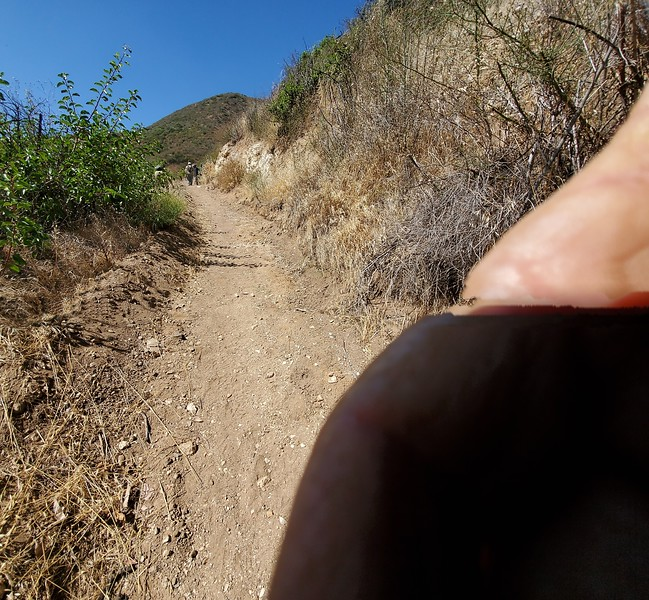 20190810011-Los Pinetos trailwork.jpg