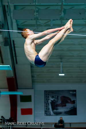 Broughton diving. January 14, 2019. 750_3131