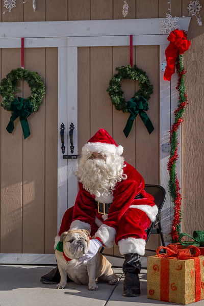 Pet Pictures With Santa-104.jpg
