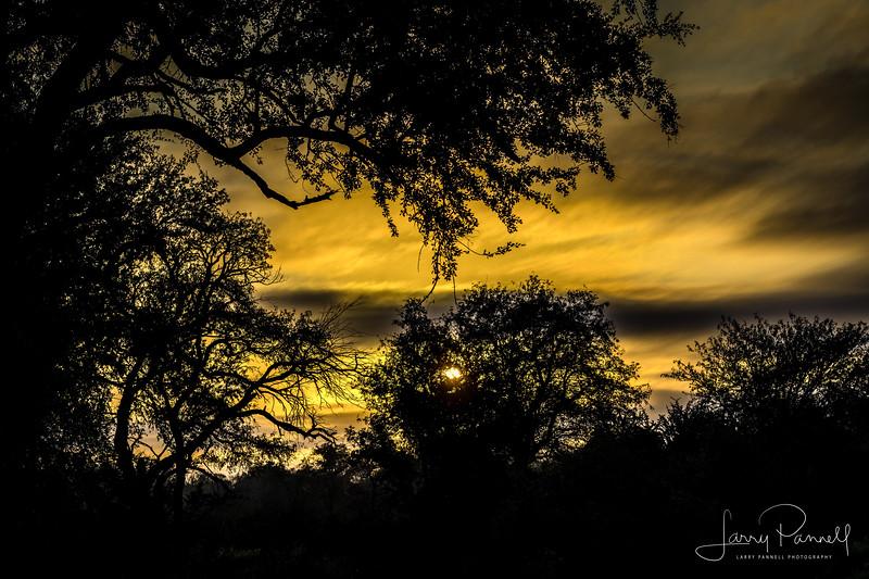 kruger sunrise1.jpg
