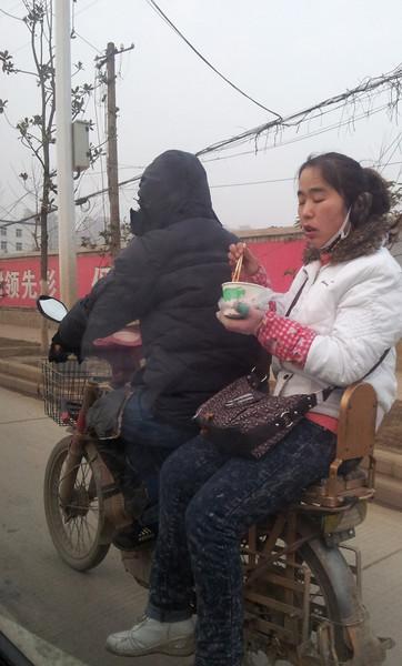 Noodles on a bike ride