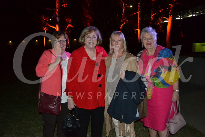DSC_ Debbie Stickel, Andrea Van de Kamp, Linda McCann and Moya McCann 1586.JPG