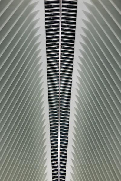 Mike Maney_NYC-62.jpg