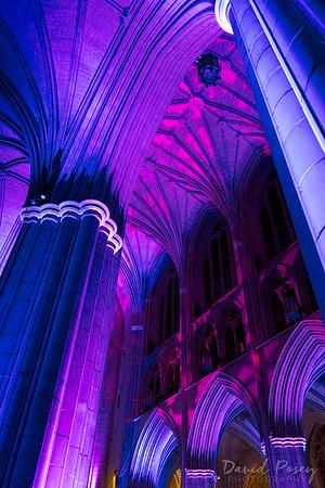 Seeing Deeper 2018 / Washington National Cathedral