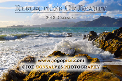 Reflections Of Beauty In A 2018 Calendar - Volume 2