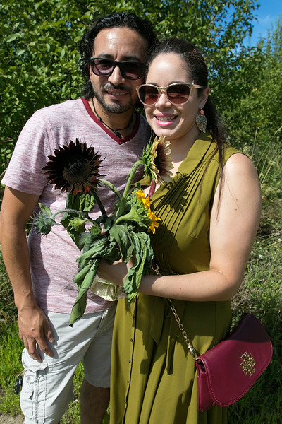 Lanni Orchards in Lunenburg held a Sunflower Festival on Saturday, August 31, 2019. The morning rush of people to see the sunflowers and get one was large so by the middle of the day not many sunflowers were left. Byron Garcia and Jessica Diaz of Boston where lucky to find these ones. SENTINEL & ENTERPRISE/JOHN LOVE