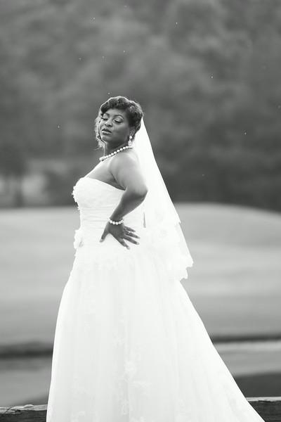 Nikki bridal-2-54.jpg