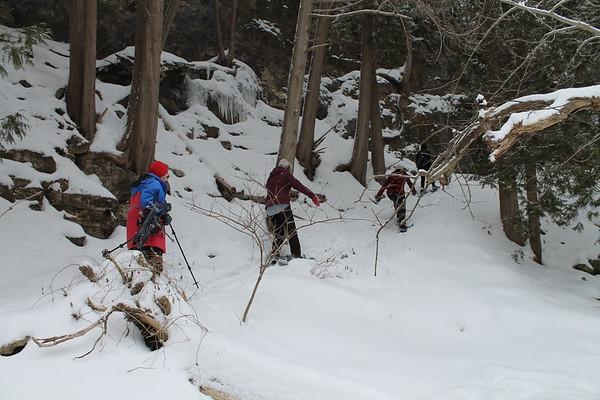 Winter Snowshoeing - 2020