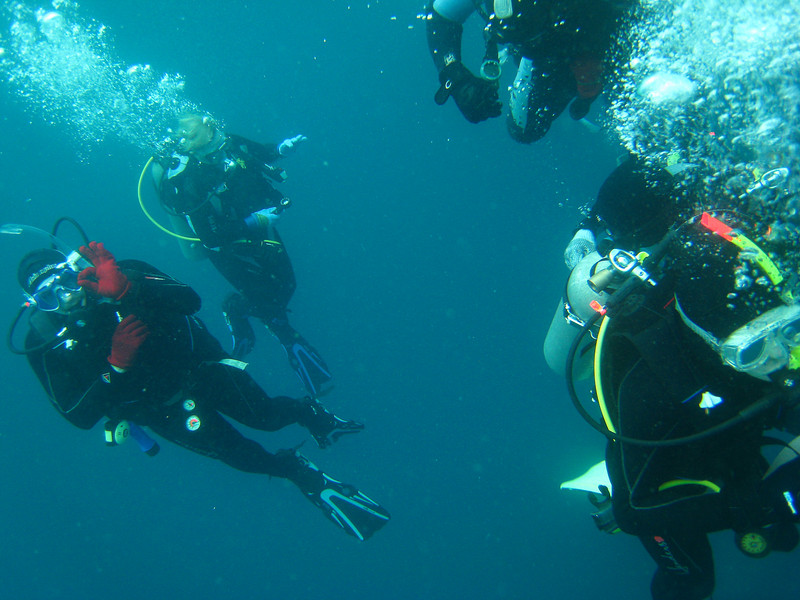 Diving in the Galapagos (392 of 392)