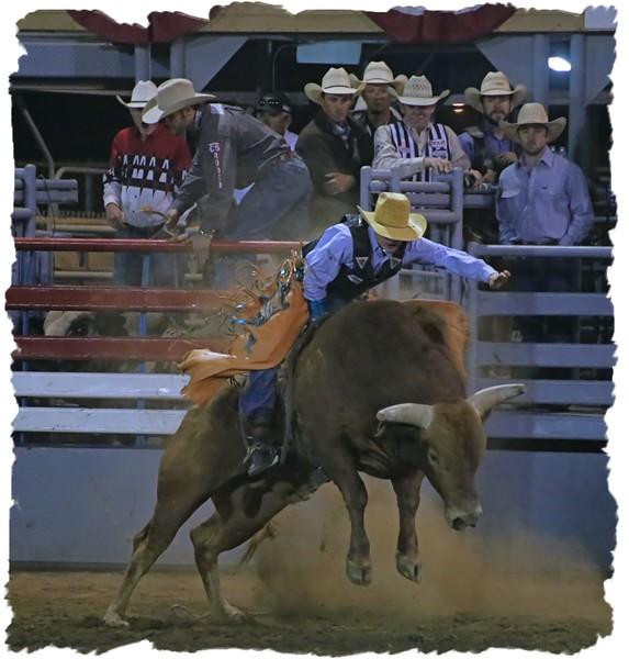 Bull Rider Friday Framed 4.17.jpg