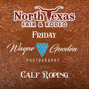 Friday Night Calf Roping