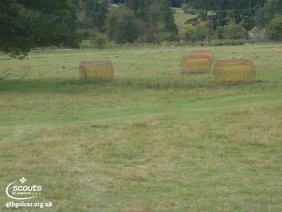 September - Wooly Edge Camp