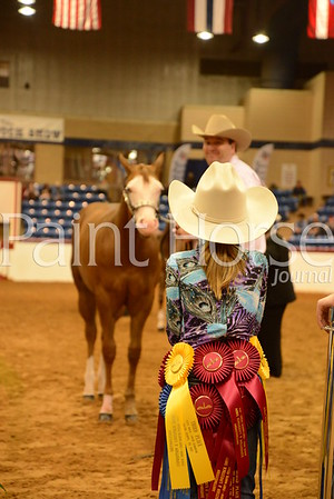 2016 Fort Worth Stock Show
