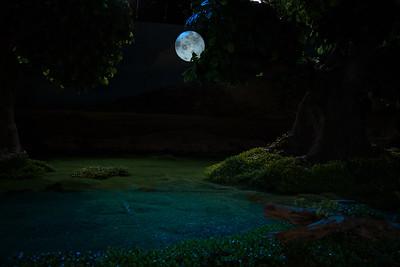 08 Luna