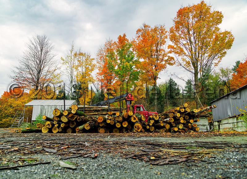 A Pretty Location for Logging