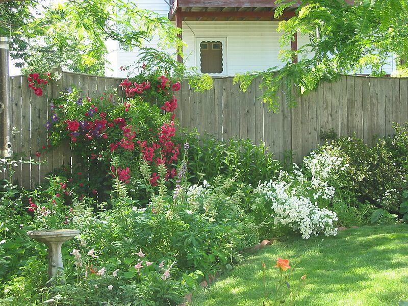 garden-2002-06-0080_std.jpg
