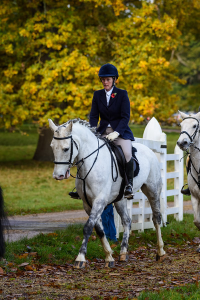 Fitzwilliam Opening meet Nov 2019-146-84.jpg