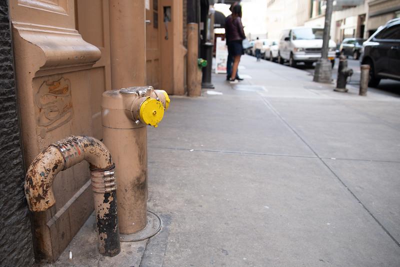 Photo Safary NYC 2018-19.jpg