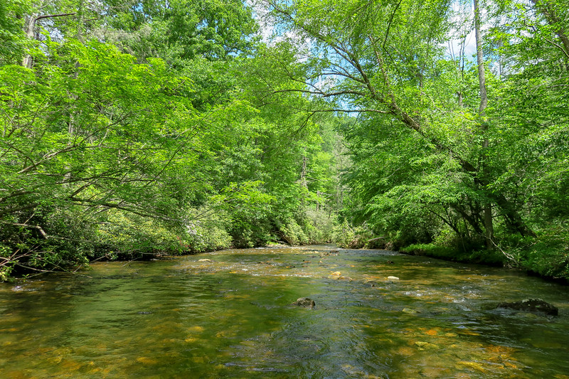 South Fork Mills River (Crossing #2) -- 2,350'