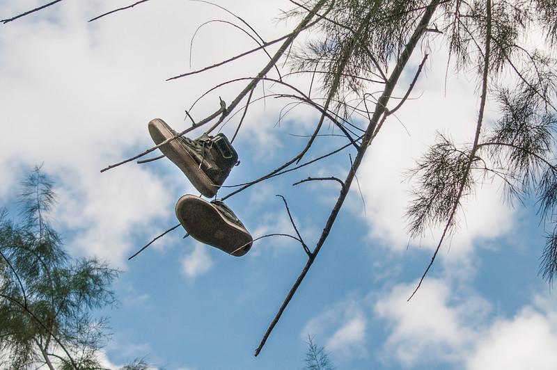 Flying Sneakers