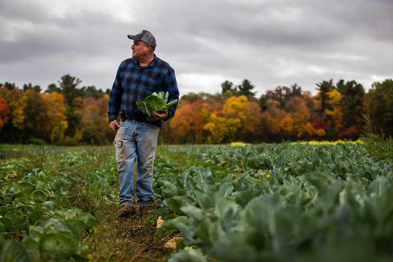 Jim Ward, farmer and owner of Wards Berry Farm, inspects crops on his farm in Sharon, Massachusetts on Tuesday, Oct. 24, 2017. Photographer: Adam Glanzman/Bloomberg