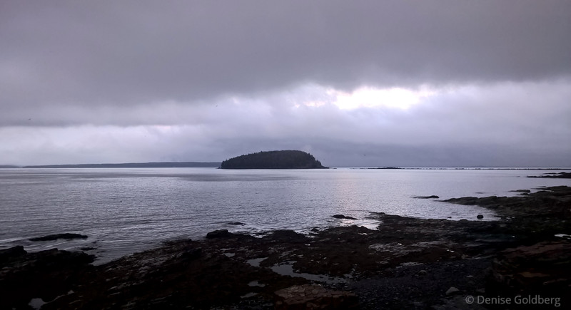late day light, along the Shore Path in Bar Harbor, Maine