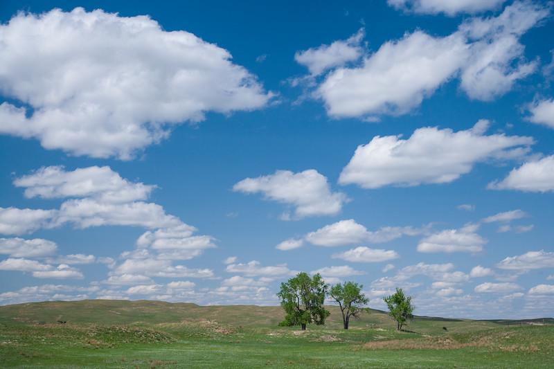 Colorado07-0168.jpg