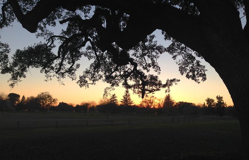 sunset elk grove.jpg