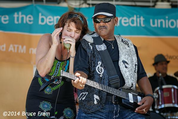 Redwood City Blues Festival 2014