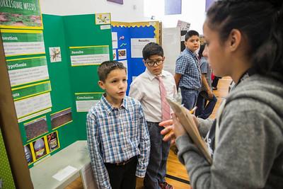 2016 Elementary Science Fair