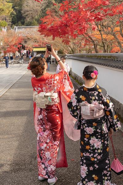 Kyoto12052018_249.jpg