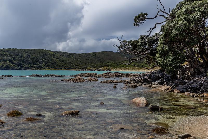 An der Waikato Bay