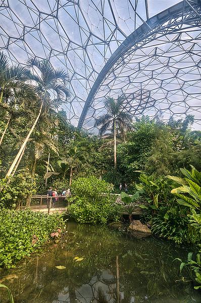 Rain  Forest  Eden  Project
