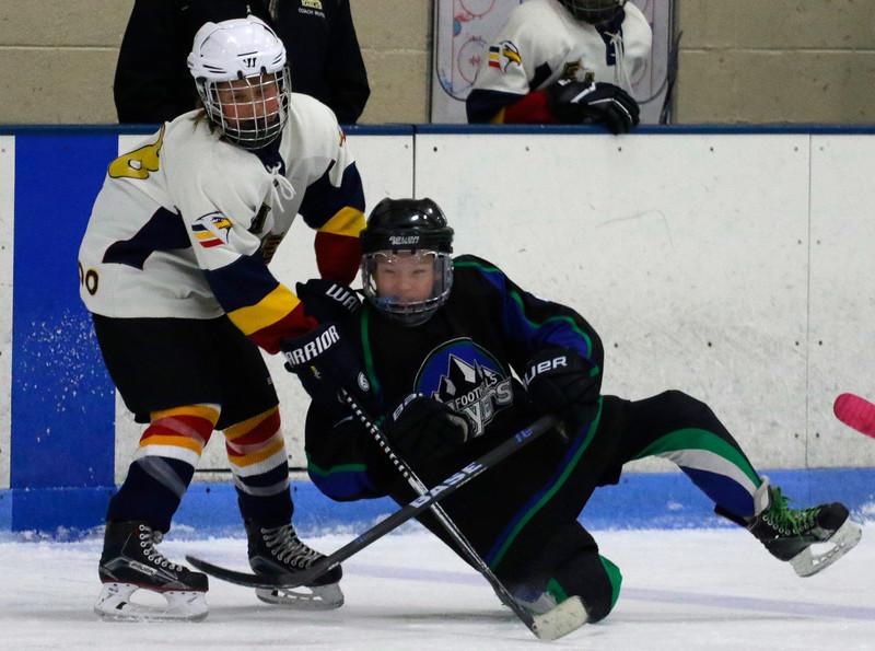2016-Feb_13-Hockey-JPM2593.jpg