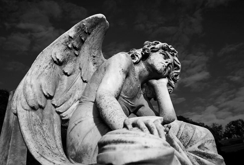 angel2_bw.jpg